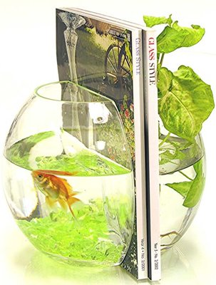 fishbowl-bookends.jpg