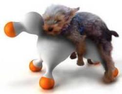 Ejercitador �ntimo para perritos