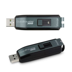 Primera USB de 256 GB