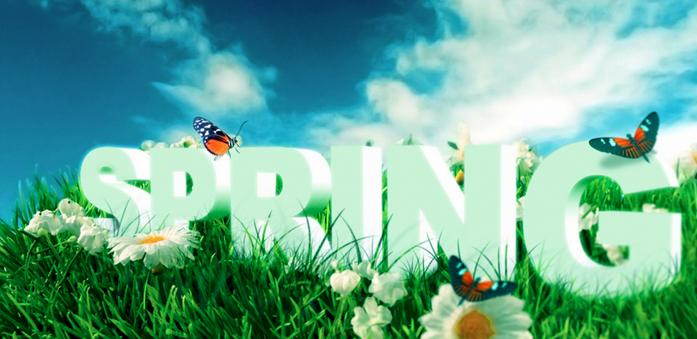 Básicos de primavera