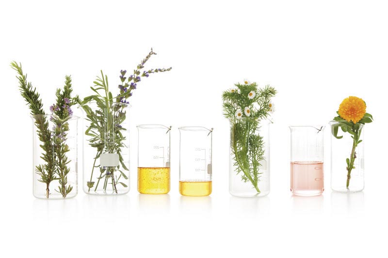 Bio-Oil_photography_Plants_and_oils_in_beakers_low_res